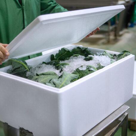 Fresh-Food-Packaging-BEWI